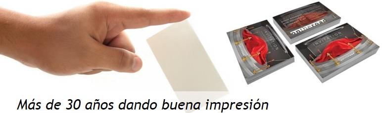 PANPRAMICA IMPRESIÓN